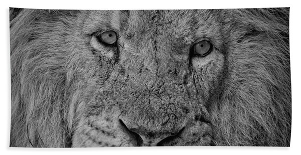 Silver Lion Hand Towel