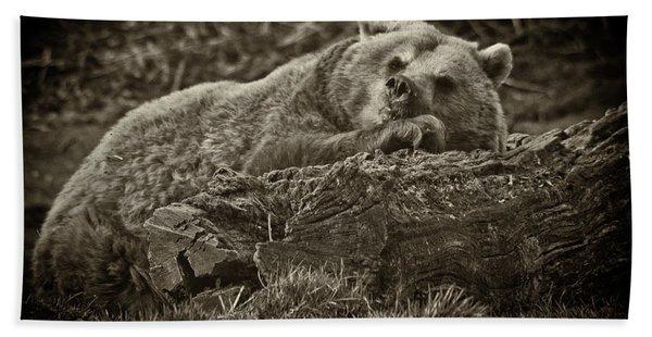 Sleepy Bear Hand Towel