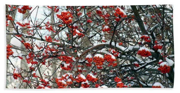 Snow- Capped Mountain Ash Berries Hand Towel