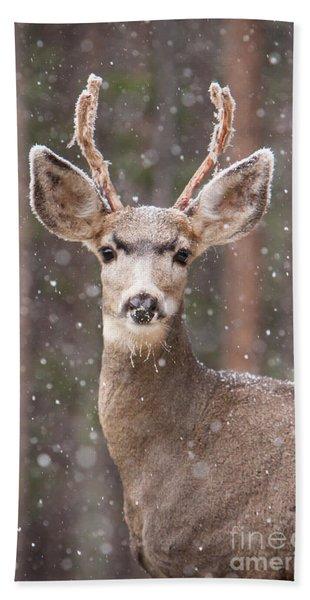 Snow Deer 1 Bath Towel