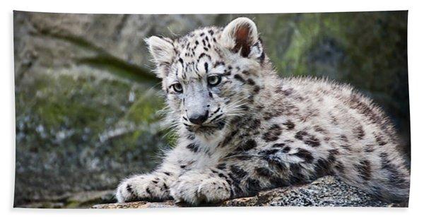 Snow Leopard Cub Hand Towel