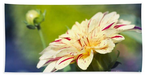 Spring Dream Jewel Tones Hand Towel