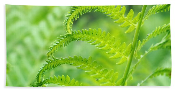 Spring Fern Bath Towel