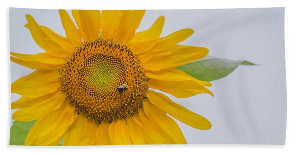 Sunflower And Bee Hand Towel
