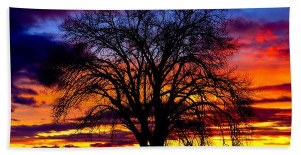 Bath Towel featuring the photograph Sunset Silhouette by Greg Norrell