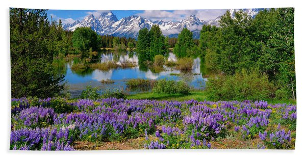 Bath Towel featuring the photograph Teton Spring Lupines by Greg Norrell