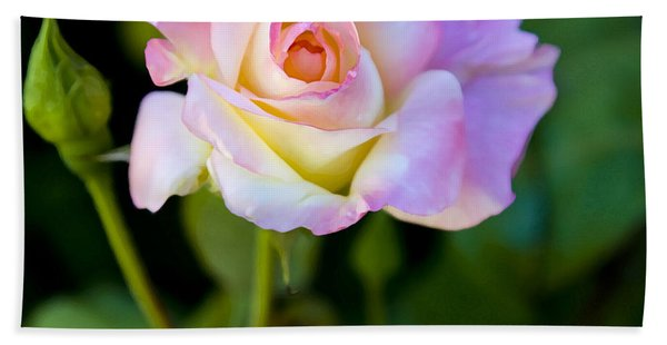 Rose-touch Me Softly Hand Towel