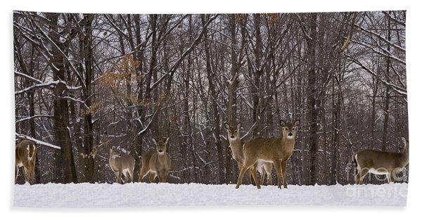 White Tailed Deer Bath Towel