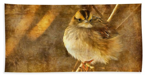 White Throated Sparrow Hand Towel