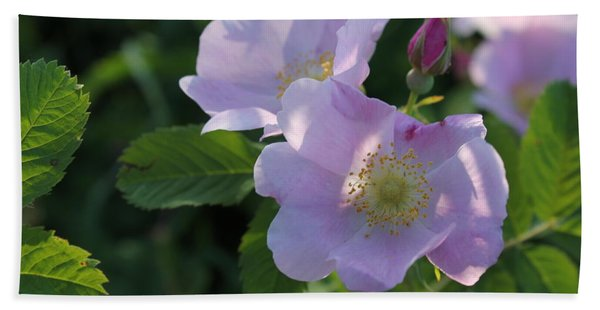 Hand Towel featuring the photograph Wild Roses by Ruth Kamenev