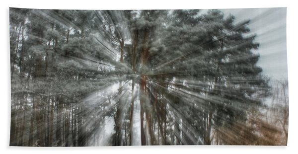 Winter Light In A Forest Bath Towel