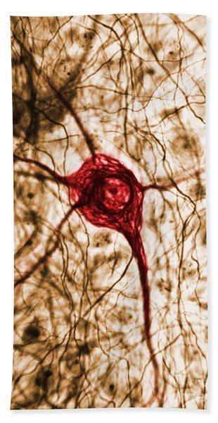 Neuron, Tem Bath Towel