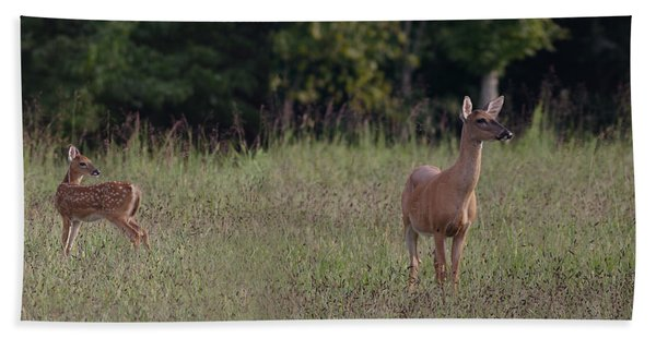 Alert Doe And Fawn Hand Towel