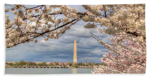 Cherry Blossoms Washington Dc 4 Bath Towel