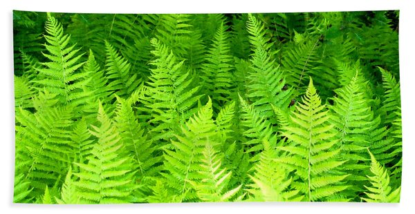 Ferns Galore Filtered Hand Towel