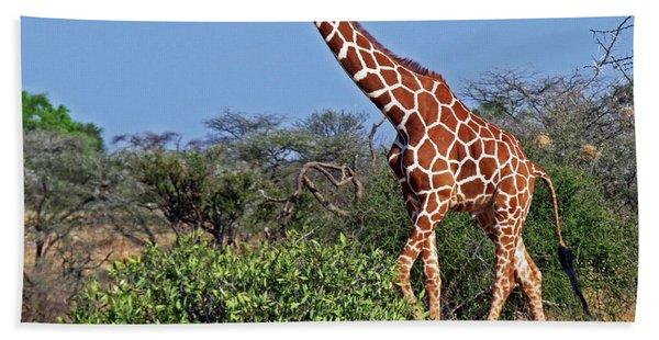Giraffe Against Blue Sky Bath Towel