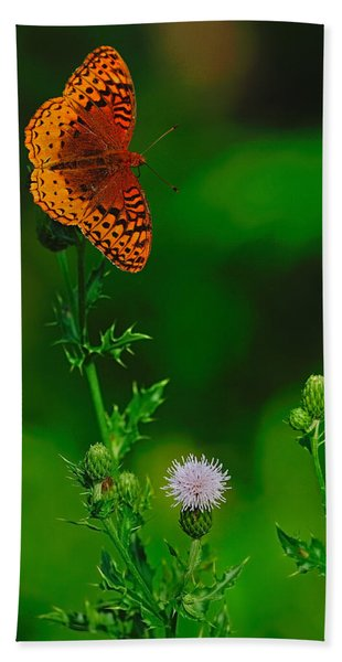 Great Spangled Fritillary Hand Towel