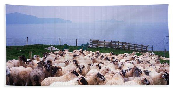 Herding Sheep, Inishtooskert, Blasket Bath Towel