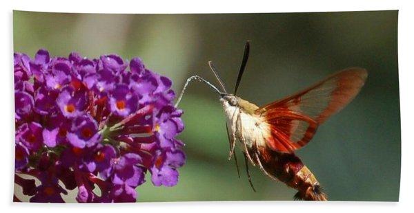 Hummingbird Moth Bath Towel