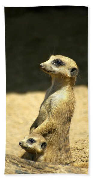 Bath Towel featuring the photograph Meerkat Mother And Baby by Carolyn Marshall