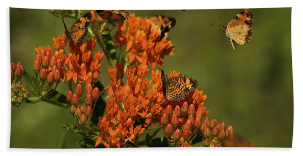 Pearly Crescentpot Butterflies Landing On Butterfly Milkweed Hand Towel