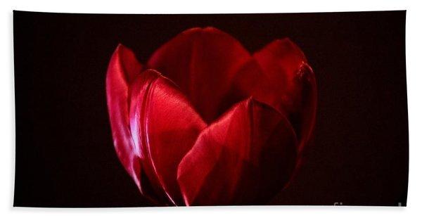 Red Tulip Hand Towel