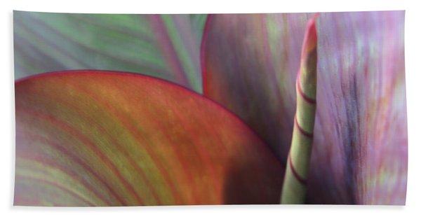 Bath Towel featuring the photograph Soft Focus Petal by Lorraine Devon Wilke