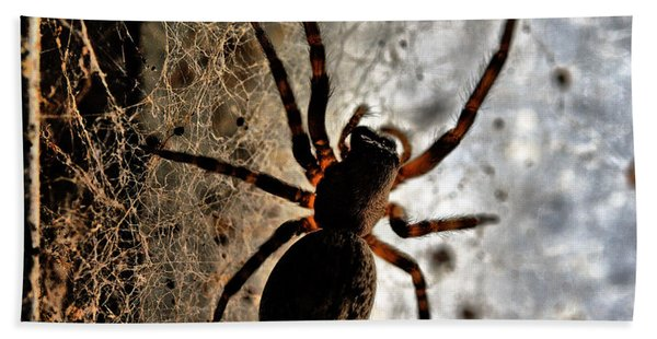 Spiders Home Bath Towel