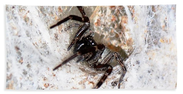 Spiders Trap Hand Towel