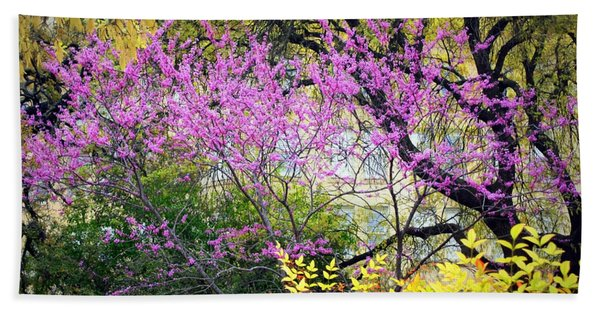 Spring Trees In San Antonio Bath Towel