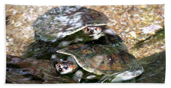 Turtle Two Turtle Love Hand Towel