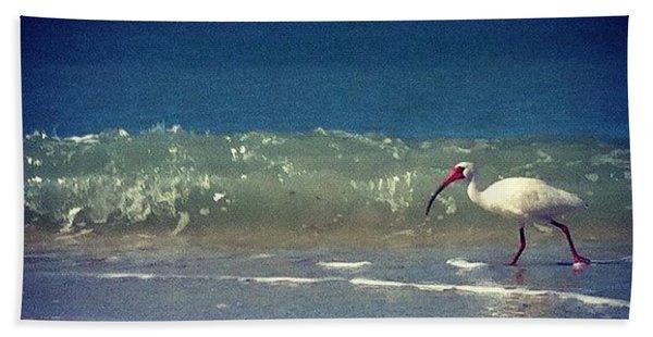 White Ibis  Bath Towel