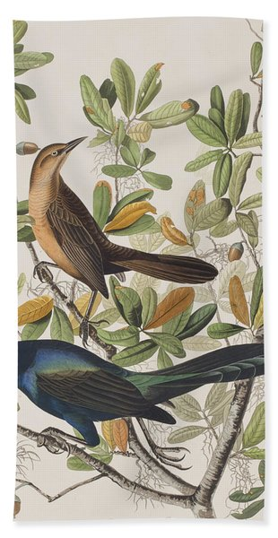 Boat-tailed Grackle Hand Towel