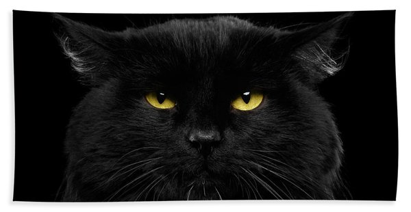 Close-up Black Cat With Yellow Eyes Hand Towel