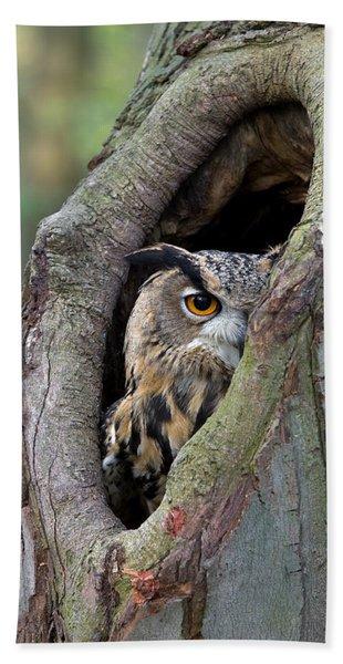 Eurasian Eagle-owl Bubo Bubo Looking Hand Towel