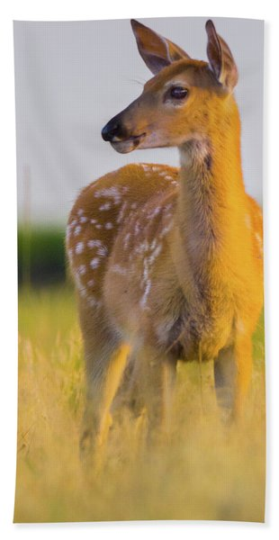 Hand Towel featuring the photograph Fawn In Sunlight by John De Bord
