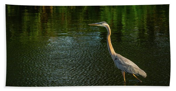 Great Blue Heron Delray Beach Florida Bath Towel
