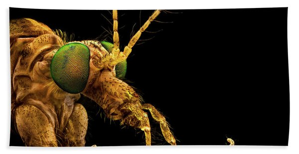 Hand Towel featuring the photograph Green Eyed Crane Fly by Mihai Andritoiu