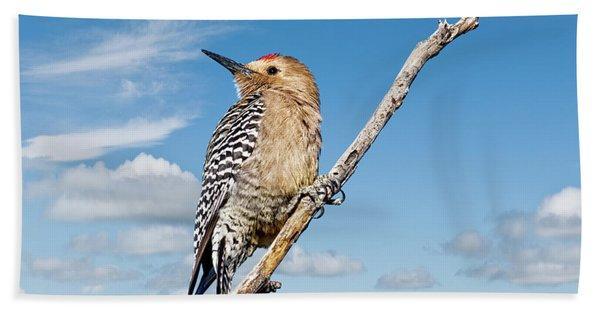 Male Gila Woodpecker Bath Towel