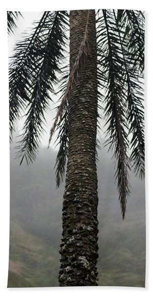 Palm, Koolau Trail, Oahu Bath Towel