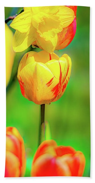 Tulips 2 Hand Towel