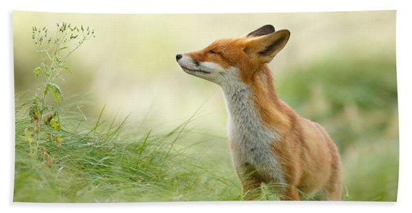 Zen Fox Series - Zen Fox Bath Towel