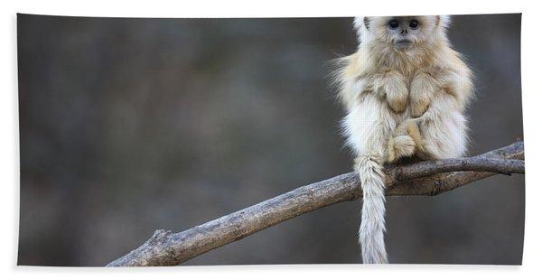 Golden Snub-nosed Monkey Rhinopithecus Bath Towel