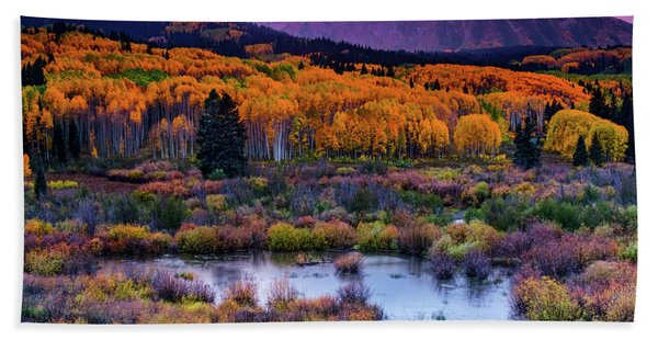 Hand Towel featuring the photograph A Colorado Fall Along Kebler Pass by John De Bord