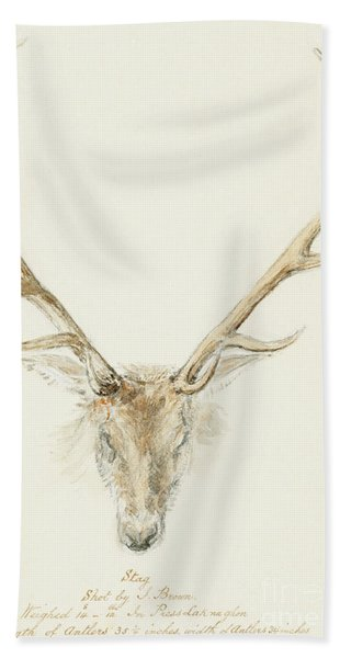 A Stag Shot By John Brown Hand Towel