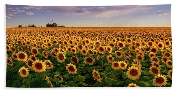Hand Towel featuring the photograph A Summer Evening In Rural Colorado by John De Bord