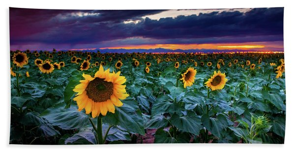 Hand Towel featuring the photograph After The Storm by John De Bord
