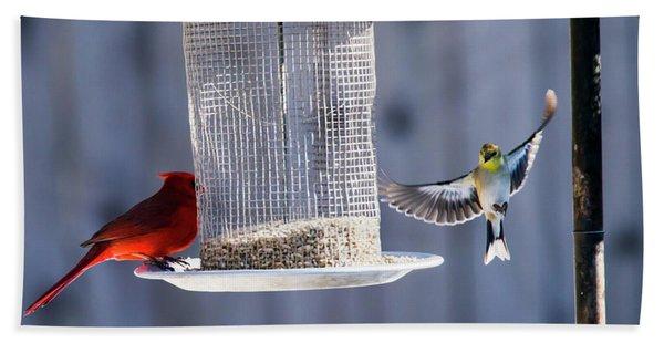 American Goldfinch Inbound Bath Towel
