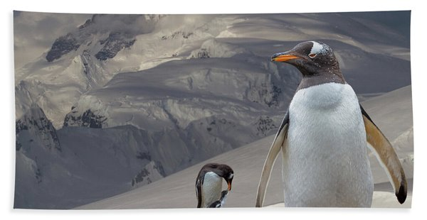 Bath Towel featuring the photograph Antarctic Magesty by Larry Linton