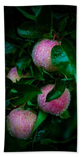 Apples After The Rain Hand Towel